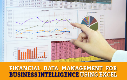Financial Data Management for Business Intelligence using Excel