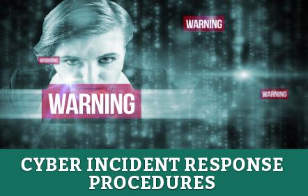 Cyber Incident Response Procedures